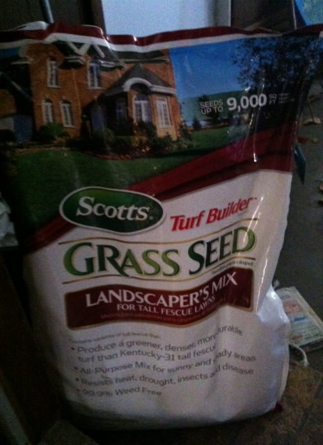 Grass Seed Recommendation