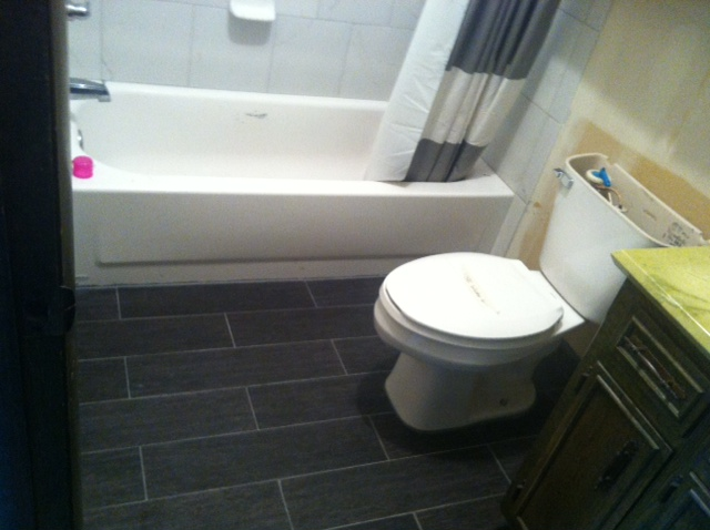 Master Bathroom Progress