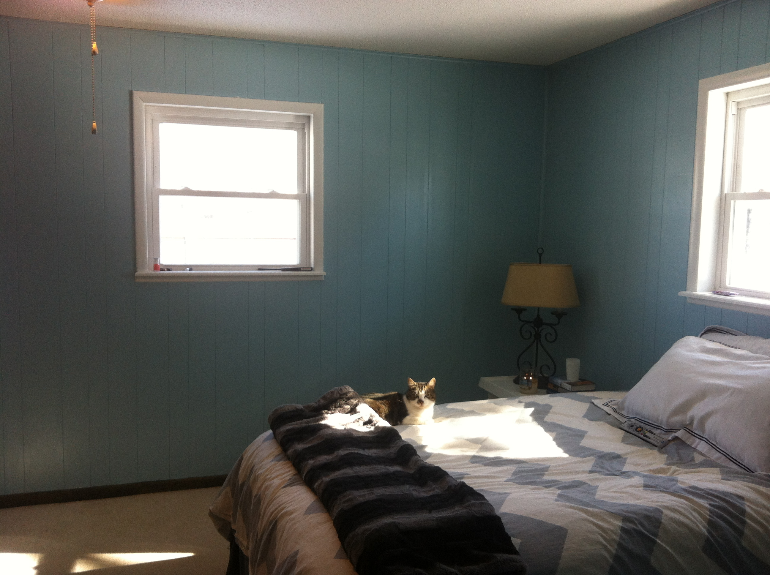 Master Bedroom Paint Progress
