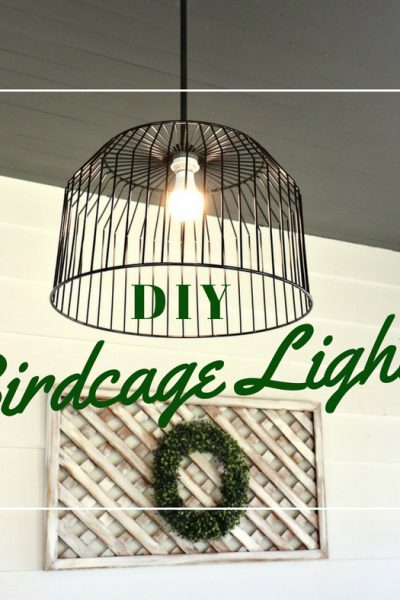 DIY Birdcage Light
