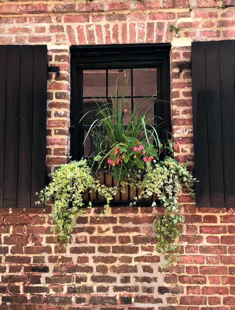 Historic Downtown Charleston Window Box