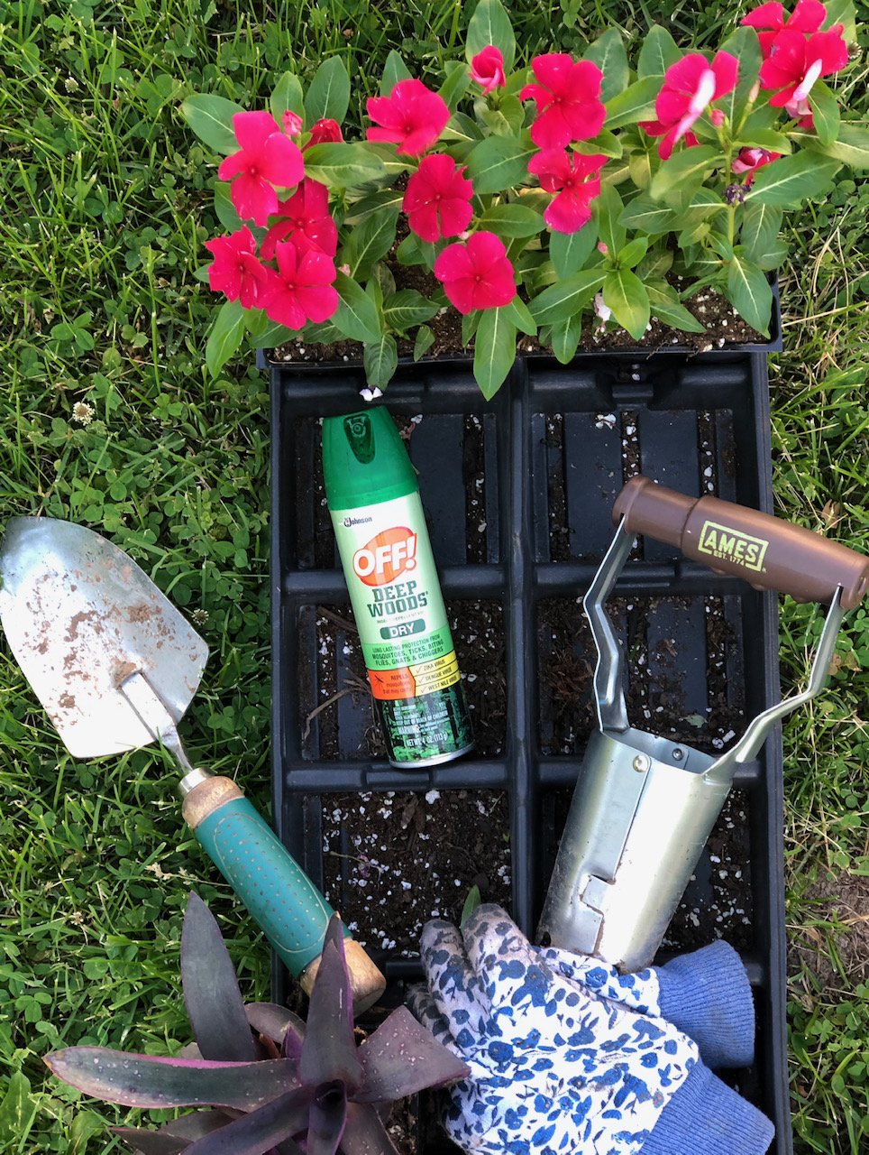 Off bug spray gardening